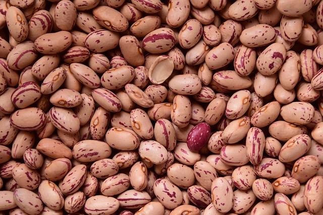 žíhané fazole