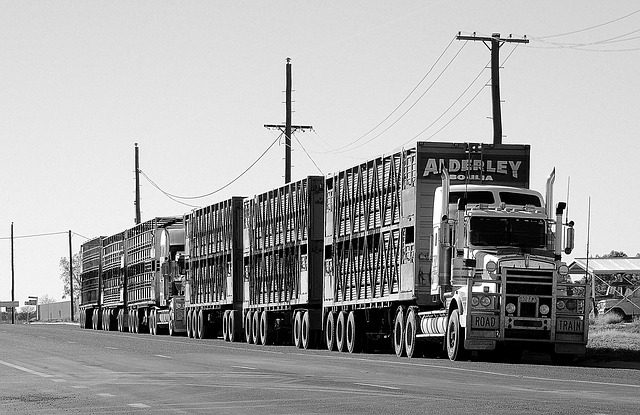 silniční vlak v Austrálii
